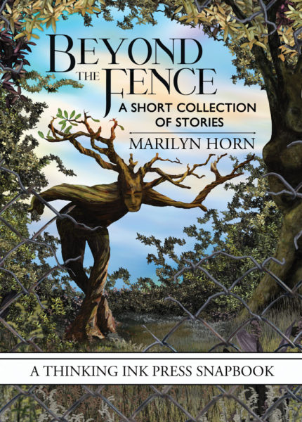 Beyond the Fence: A Short Collection of Stories